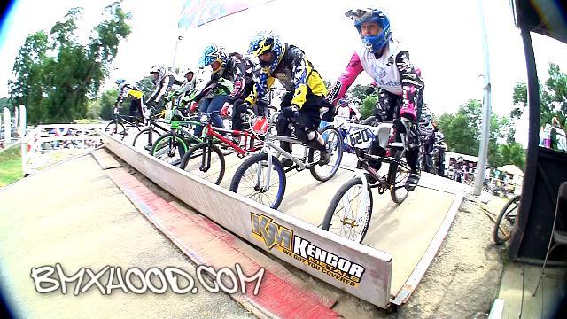 Women Cruisers, BMX, Southpark