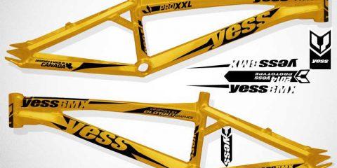 Yess-2014-frames