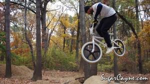 Crazy Al Cayne, Cunningham Trails