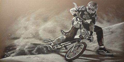 SE BMX Art rick hector