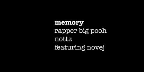 memory big pooh , nottz