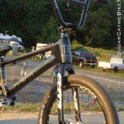 Truth BMX Main Event Carbon (8)