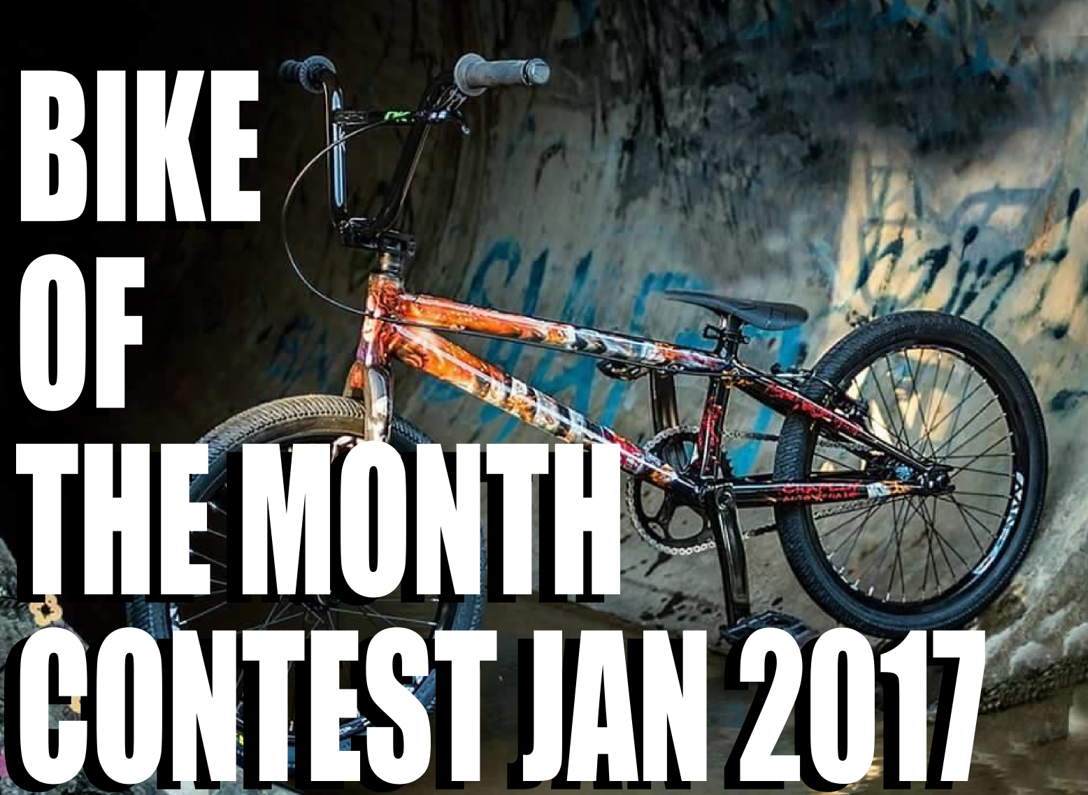 Bike of the month jan