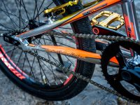 chase bicycles rsp 3.0 custom rear