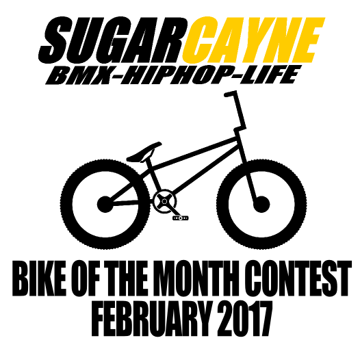 bike of the month FEB 2017