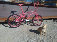 Marty Edan Zagmaster custom bmx side