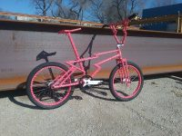 Marty Edan Zagmaster custom bmx bike 2