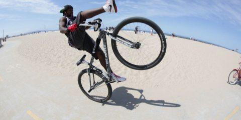 DBlocks Wheelie Beach