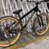 2019 SE Bikes DJ Prototype