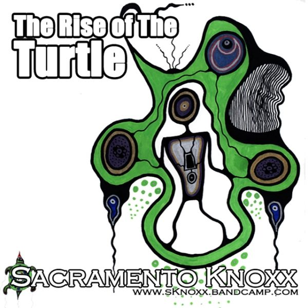 the rise of the turtle