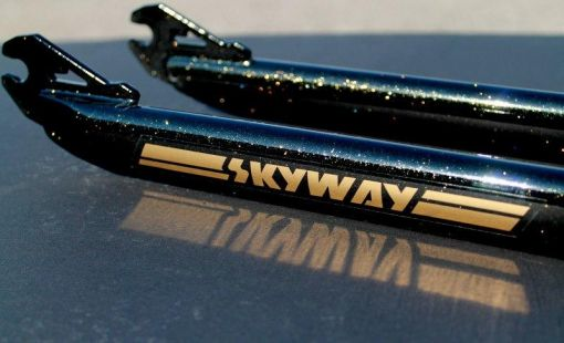 skyway ta black gold sparkle 3