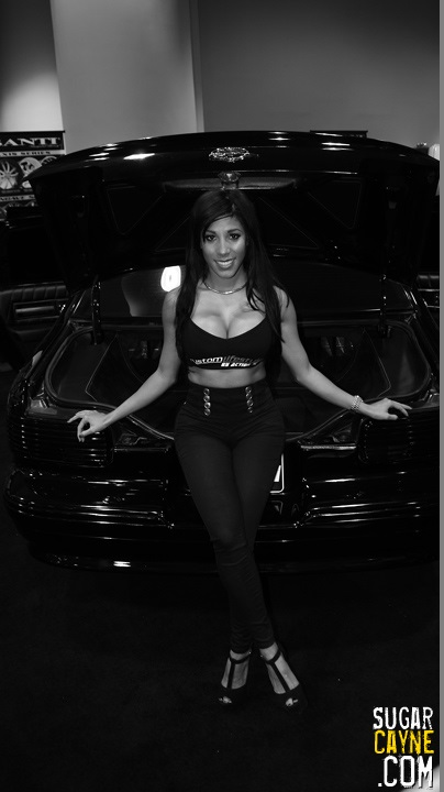 2013 Dub Auto show (249)