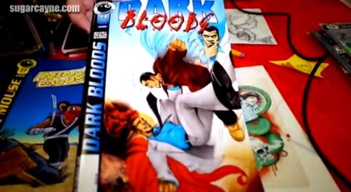 section 8 comics