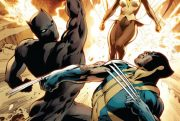 black-panther-vs-wolverine cover