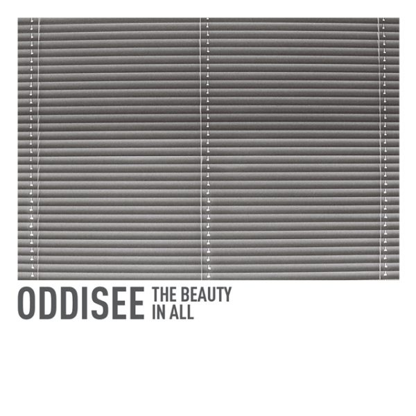 oddisee the beauty in all