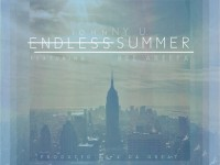 endless summer johnny u