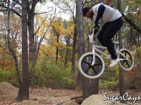 Crazy Al Cayne, Cunningham Trails