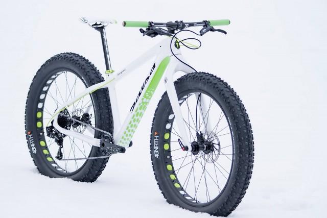 Salsa Beagrease Green Edition fat bike