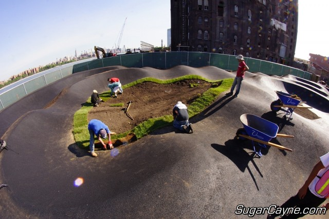 Brooklyn Bike Park (11)