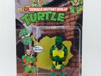 mr teenage mutant ninja turtles
