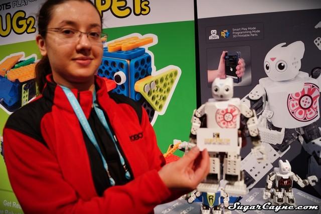 Robotis Mini (1)