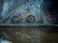 chase bicycles rsp 3.0 custom side