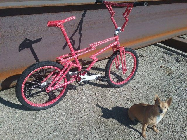 Marty Edan Zagmaster custom bmx bike