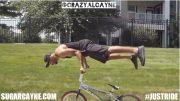 crazy al cayne, jumping curbs