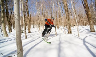 fat bike skis thumb
