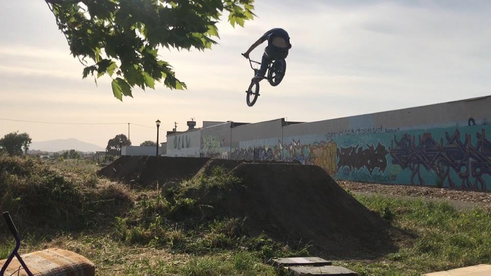 dirt world dirt jump line