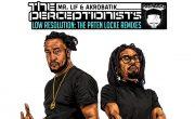 The Perceptionist Resolution remix