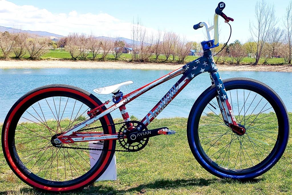 daylight arc c1 glory bmx bike