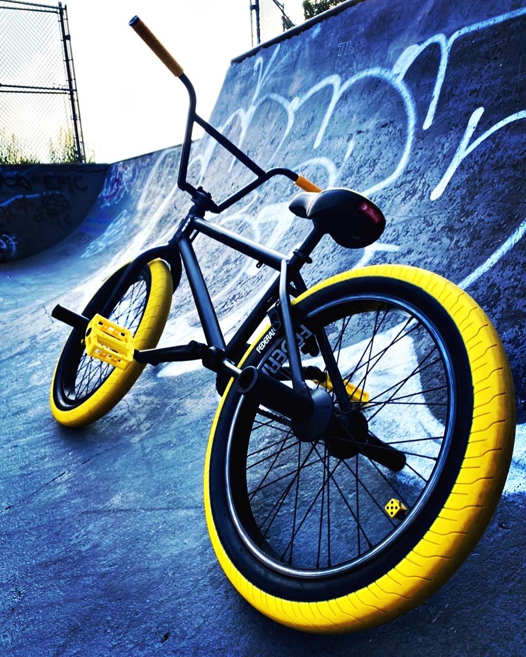Subrosa bmx bike rear